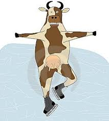 cow on ice